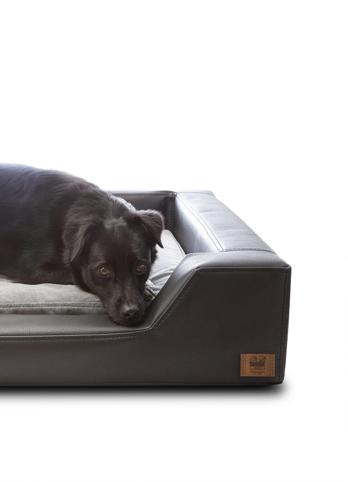 Hundebett Schwarz 1